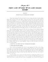 Chuyên Đề Pháp Luật Về Kinh Tế Và Luật Doanh Nghiệp