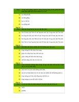 120 câu hỏi trắc nghiệm sinh học 12   sinh học 12   nguyễn ngọc hùng