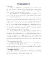 TIỂU LUẬN TRIẾT học   ẢNH HƯỞNG của PHẬT GIÁO đến đời SỐNG TINH THẦN của một bộ PHẬN QUẦN CHÚNG NHÂN dân ĐỒNG BẰNG SÔNG cửu LONG