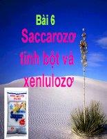 Saccarozo tinh boet va xenlulo