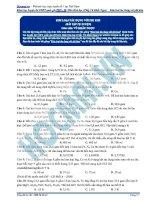 Bai 12  bai tap kiim loai tac dung voi phi kim PDF
