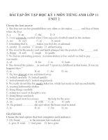 Bài tập môn tiếng anh lớp 11 (52)