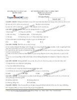 Đề thi thử THPT Quốc gia môn Sinh họcSở GDĐT quảng nam   lần 1