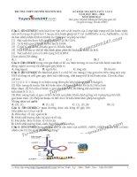 Đề thi thử THPT Quốc gia môn Sinh học trường Chuyên nguyễn huệ, hà nội   lần 3