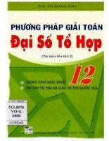 Phuong phap giai dai so to hop 12 (NXB dai hoc quoc gia 2008)   vo giang giai, 158 trang (NXPowerLite copy)