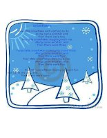 16982 snowflakes poem