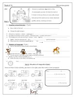 islcollective worksheets elementary a1 elementary school reading spelling writing word order reading comprehensio term t 8367341855560a3a5d25222 89434202