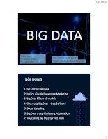 Thuyết trình môn marketing chủ đề big data