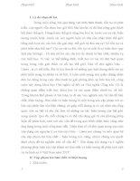 Vận dụng nội dung và ý nghĩa phương pháp luận của cặp phạm trù bản chất và hiện tượng để phân tích một vụ án hình sự ở Việt Nam năm 2015