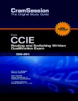 Cisco CCIE Routing And Switching Written Qualification Exam