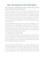 Bài thu hoạch cảm tình đảng điểm 10