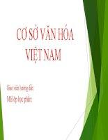 Phân tích các giá trị văn hóa đặc trưng của văn hóa Việt Nam