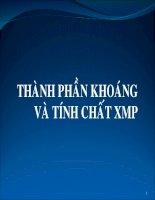 THÀNH PHẦN KHOÁNG VÀ TÍNH CHẤT XI MĂNG PORTLAND