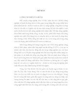 LUẬN án TIẾN sĩ   PHÁT TRIỂN làn NGHỀ TRUYỀN THỐNG TRONG QUÁ TRÌNH CÔNG NGHIỆP hóa, HIỆN đại hóa ở VÙNG VEN THỦ đô hà nội