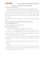Giải bài tập trang 80 SGK Sinh học lớp 10: Giảm phân