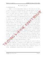 Thực trạng công tác kế toán và quản lý hàng tồn kho tại công ty cổ phần dược trung ương medipharco – tenamyd