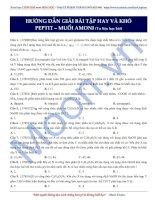 tài liệu hóa   amin aminoaxit peptit (7)