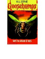 17   why im afraid of bees