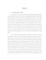 LUẬN văn THẠC sĩ   cơ sở lý LUẬN và THỰC TIỄN KHẮC PHỤC án tồn ĐỌNG TRONG THI HÀNH án dân sự ở VIỆT NAM HIỆN NAY