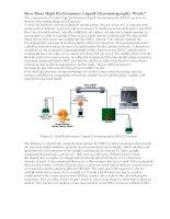 Phương pháp phân tích sắc ký lỏng hiệu năng cao  HPLC