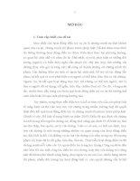 LUẬN văn THẠC sĩ   CÔNG tác TRUY tìm vật CHỨNG của cơ QUAN CSĐT tội PHẠM về TRẬT tự xã hội TRONG điều TRA các vụ án cướp tài sản TRÊN địa bàn THÀNH PHỐ hà nội
