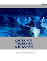 Bào cáo tài chính BIDV các năm (11)