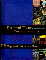 Financial theory and corporate policy 4th ed