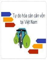 Tự do hóa cán cân vốn tại Việt Nam