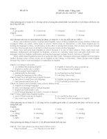 Tổng hợp 80 đề thi tốt nghiệp môn tiếng anh (1)