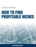 how to find profitable niches