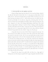 LUẬN văn THẠC sĩ   về VIỆC bảo hộ QUYỀN sở hữu CÔNG NGHIỆP đối với các  NHÃN HIỆU HÀNG hóa THEO PHÁP LUẬT VIỆT NAM và PHÁP LUẬT HOA kỳ