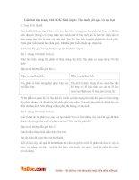 Giải bài tập trang 104 SGK Sinh lớp 6: Thụ tinh kết quả và tạo hạt