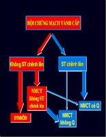 Bệnh mạch vành  Tiêu chuẩn, phân tầng, các thang điểm đánh giá.