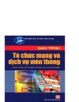 THCN giáo trình tổ chức mạng và dịch vụ viễn thông   ks phạm thị minh nguyệt, 316 trang