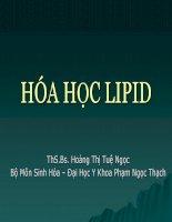 bài giảng hóa học lipid