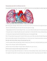 Tăng áp động mạch phổi cái chết được báo trước
