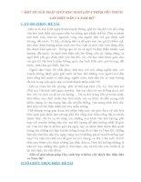 SKKN MỘT SỐ GIẢI PHÁP GIÚP HỌC SINH LỚP 6 THÊM YÊU THÍCH  LÀN ĐIỆU DÂN CA NAM BỘ