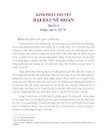 Kinh Phật Thuyết Đại Bát Nê Hoàn Phẩm Thứ 9 Tứ Y