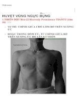 Vị trí huyệt vùng ngực, bụng