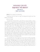 Kinh Phật Thuyết Đại Bát Nê Hoàn Phẩm Thứ 13 Như Lai Tánh
