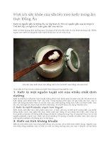 9 lợi ích sức khỏe của sữa lên men kefir trong ẩm thực đông âu