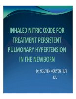Inhaled nitric oxide for treatment persistent pulmonary hypertension in the newborn