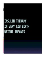 Insulin therapy in very low birth weight infants