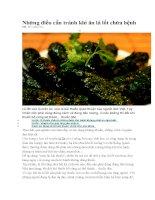 Những điều cần tránh khi ăn lá lốt chữa bệnh