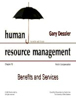 Dessler ch 13 benefits and services