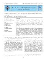 Nghiên cứu phong tục trên phương tiện khái niệm và liên ngành