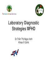 Laboratory diagnostic strategies MFHD