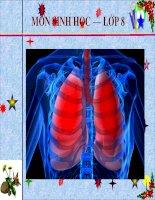 Bài giảng sinh học 8 vệ sinh hô hấp thao giảng (11)