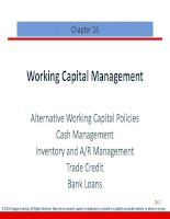 Finance management cengage 2013 chapter 016