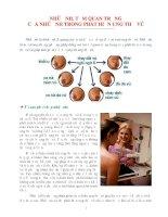 Vai trò của chụp nhũ ảnh trong phát hiện ung thư vú